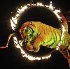 Цирки в Белой Холунице
