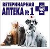 Ветеринарные аптеки в Белой Холунице
